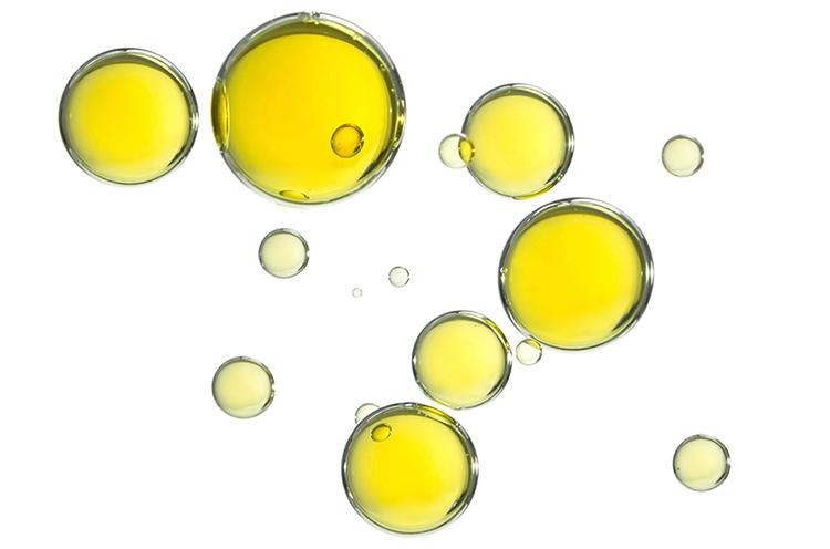 Bulk supply oils & oil powders for tablets. Know what's in your products with Connoils.   Connoils