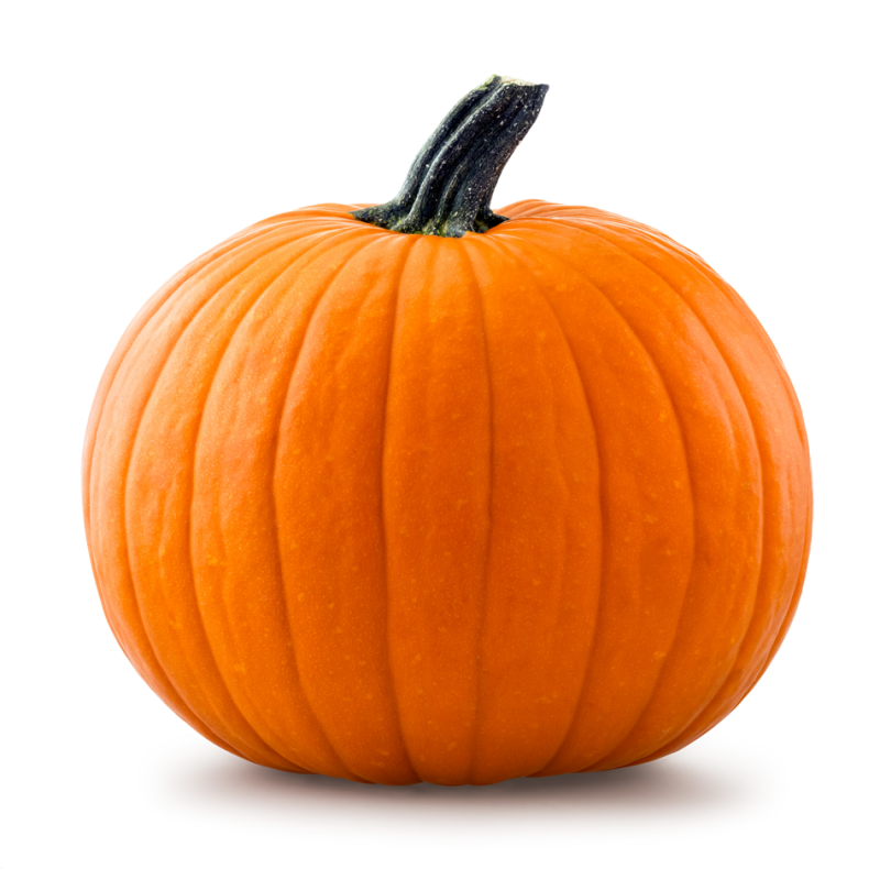 Pumpkin Protein 60% - Nutra Food Ingredients %