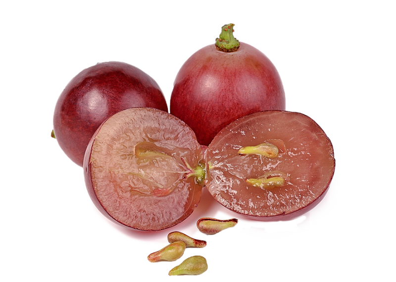 panasource-usa | Grape Seed