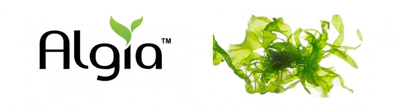 Algia Oil » Puredia