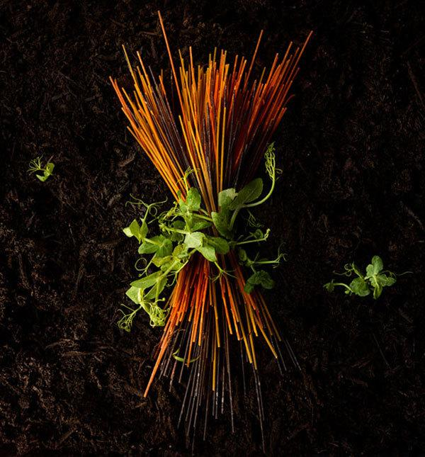 Non-GMO & Organic Soybean Seed & Non-GMO Pea Seed - PURIS