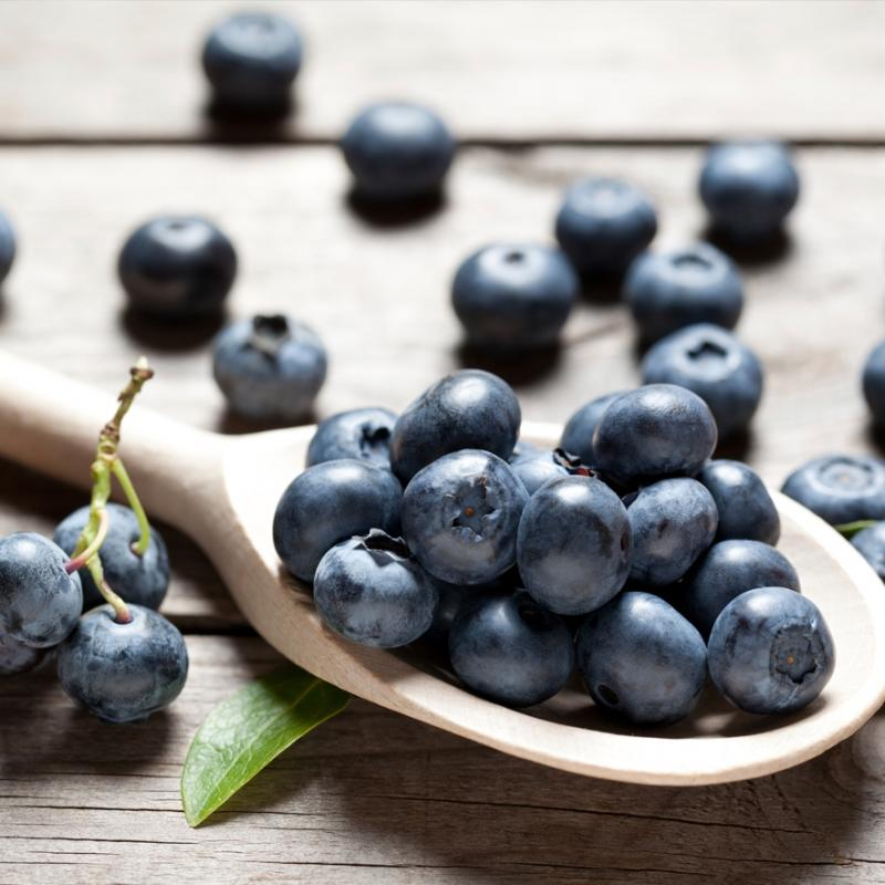 Dehydrated & Dried Blueberries | Silva International - Silva International