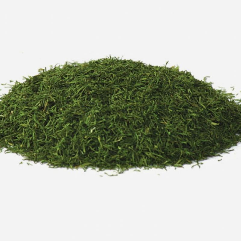 Dried Dill | Spices Wholesale | Silva International - Silva International