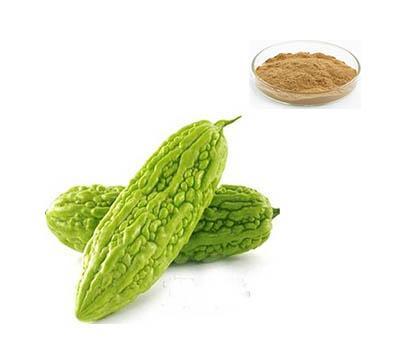 Bitter Melon Extract - Gaoyuan Bio-Chem