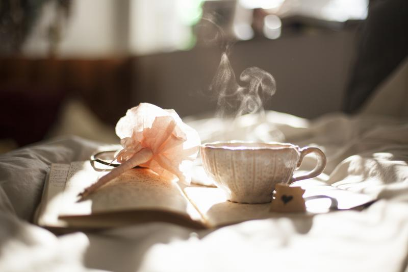 Cranberry Tea Powder - Fruit D'Or