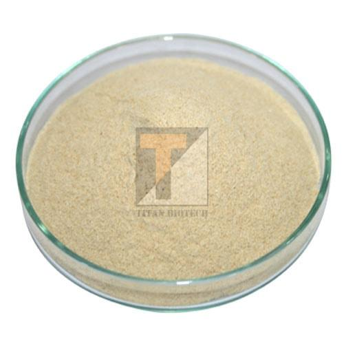 Buy Bulk Dry Malt Extract Powder & Paste | Manufacturers & Suppliers
