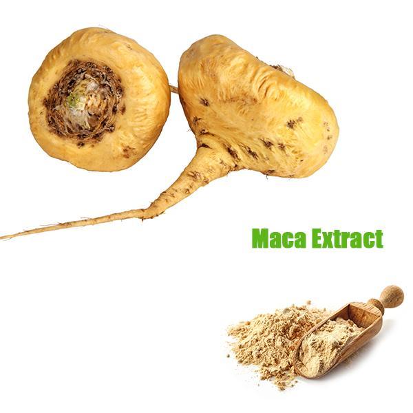 MACA EXTRACT_Forward Farma Inc.