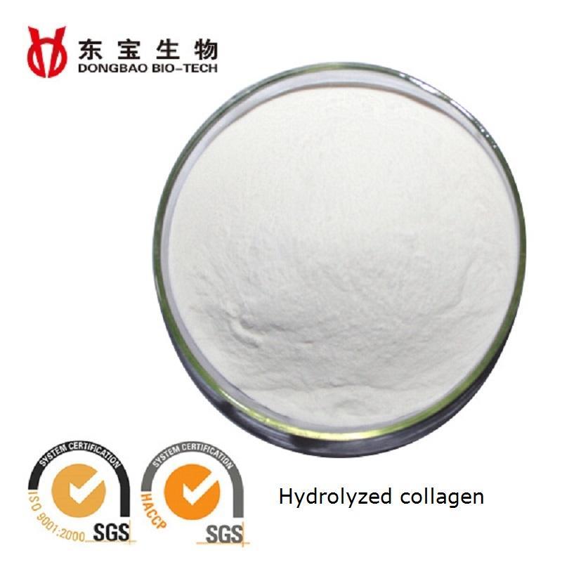 Hydrolyzed Collagen_Baotou Dongbao Bio-Tech CO., LTD.