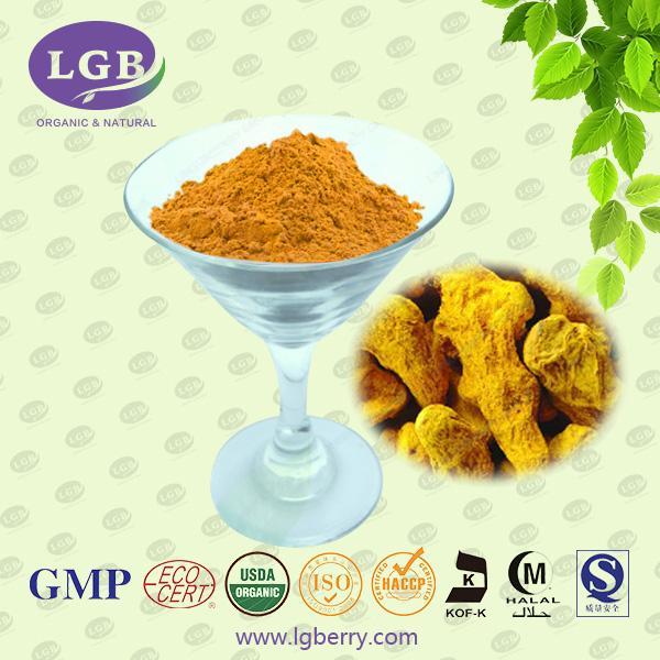 Curcuma longa Root Extract-DaXingAnLing Lingonberry Boreal Biotech Co.,Ltd.Lingonberry Group