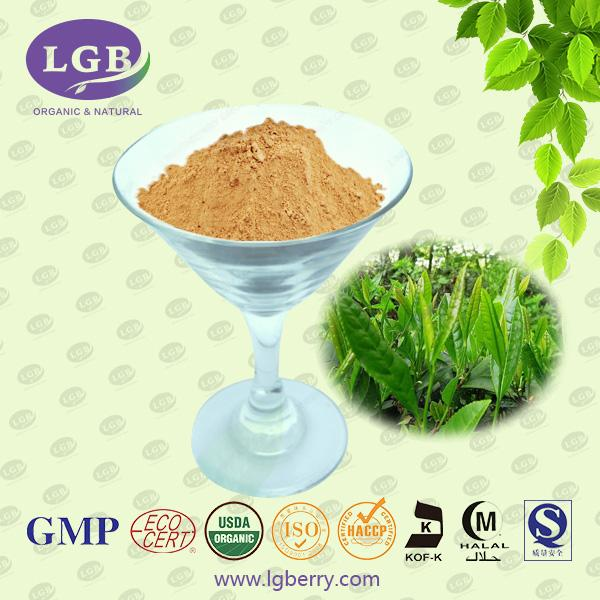 Green Tea Extract-DaXingAnLing Lingonberry Boreal Biotech Co.,Ltd.Lingonberry Group