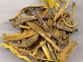 Berberine Hydrochloride - Nutraceutical - Herbal extracts factory andrographis extract rutin gingko biloba extract MAOYUAN Biochem