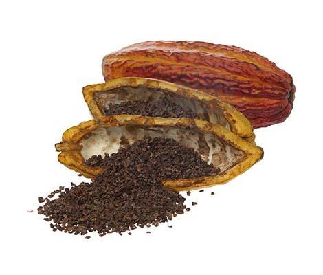 Sale of chocolates - Peruvian cocoa husks - Machu Picchu Foods leader in chocolate esports