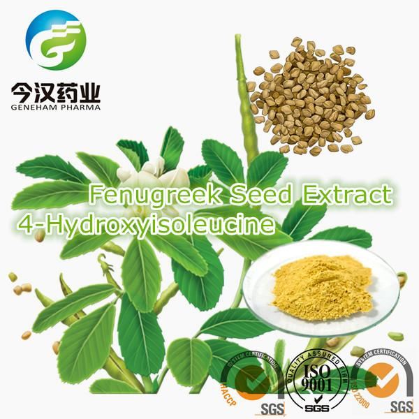 Geneham Pharmaceutical Co.,Ltd./Rosemary Extract/Mulberry Leaf Extract/Fenugreek Seed Extract