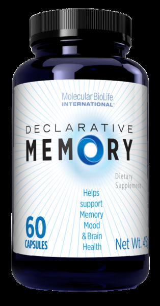 Declarative Memory | MolecularBioLifeInternational