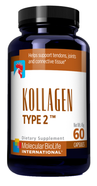 Kollagen Type II | Collagen Products | Molecular BioLife International | MolecularBioLifeInternational