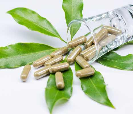 Standardized Herbal Extracts   Phytochemicals Extracts   Botanical Extracts   Personal Care Ingredients Suppliers