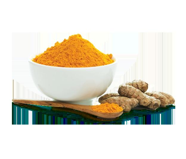 CurQfen - Bioavailable Curcumin Powder | Curcumin Manufacturer in India