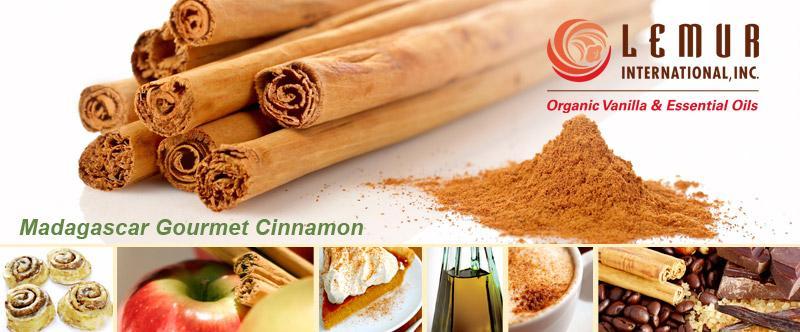 Lemur International Inc. [Cinnamon]