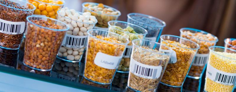Food Testing | Southwest Research Institute