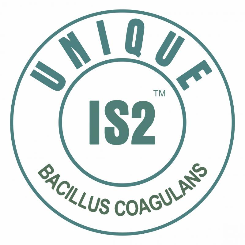 BACILLUS COAGULANS UNIQUE IS-2