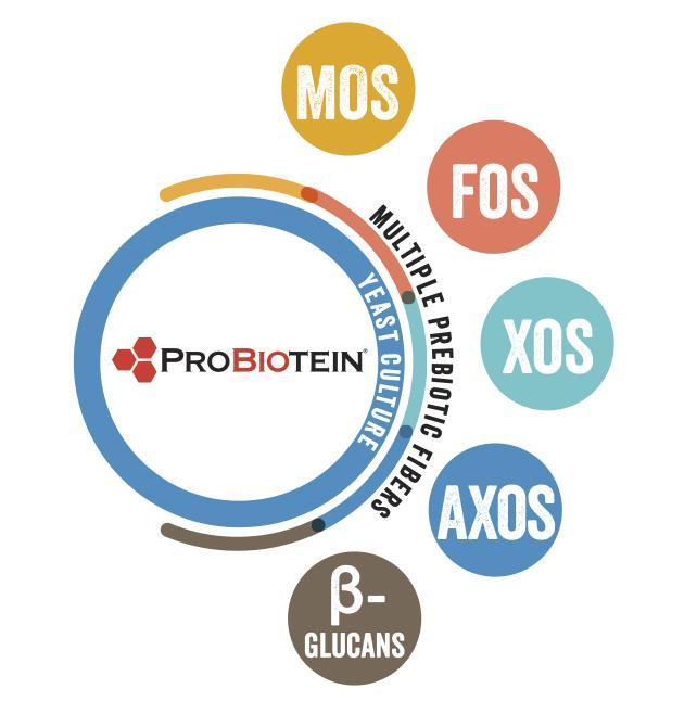 ProBiotein® Multi-Prebiotic Fiber Source