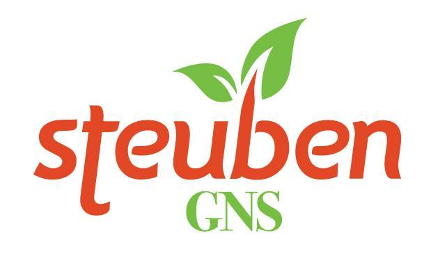 Stueben logo