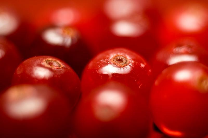 Cranberry, Anthocran, Indena