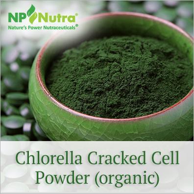 Chlorella Cracked Cell Powder (organic) - Nutra Organics