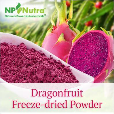 Dragonfruit Freeze-dried Powder
