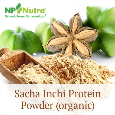 Sacha Inchi Protein Powder (organic) - Plant Protein