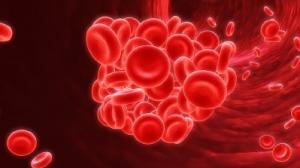 Health Benefits - Nattokinase - SUNGEN BIOTECH | Extrakinase,Natto K2™,Probiotics,OEM Service