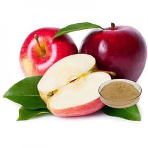 Apple Extract-Changsha Zhongren Biotechnology Co., Ltd.