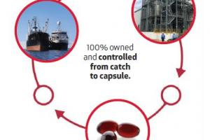 The fishing and production of krill oil