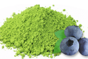 Blueberry Matcha Green Tea - AOI Tea Company