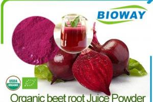 China Organic Beet Root Powder Manufacturers, Suppliers and Factory - Wholesale Products - Bioway (Xi'An) Organic Ingredients Co.,Ltd
