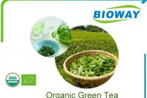 China Organic Green Tea Manufacturers, Suppliers and Factory - Wholesale Products - Bioway (Xi'An) Organic Ingredients Co.,Ltd