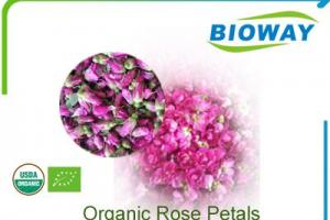 China Organic Rose Petals Manufacturers, Suppliers and Factory - Wholesale Products - Bioway (Xi'An) Organic Ingredients Co.,Ltd