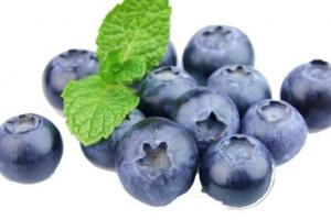 Blueberry Extract Vaccinium Corymbosum (Blueberry) Fruit Extract - Bio Botanica