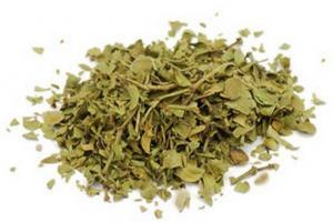 Chaparral Herb Larrea Divaricata Extract - Bio Botanica