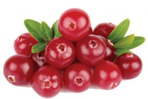 Cranberry Vaccinium Macrocarpon (Cranberry) Fruit Extract - Bio Botanica