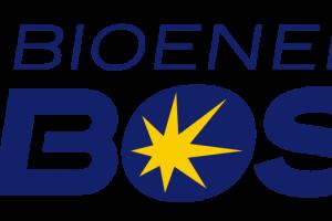 Bioenergy Ribose: the building block of ATP