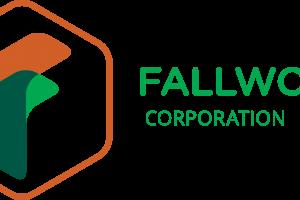 Services - Fallwood Corporation