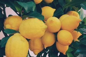 Innovations – Foodarom