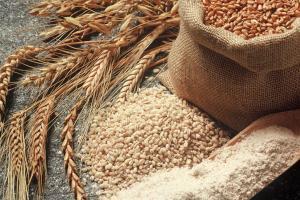 Cereal Grains - HFI