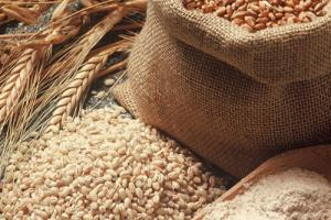 Cereal Grains - HFI