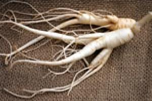 Ginseng (Whole/ Cut/ Slice)
