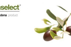 Oleaselect, Olive Pulp, Indena