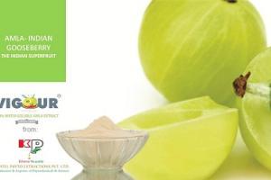 VIGOUR High Antioxidant value, Indian Gooseberry, Innovative AMLA