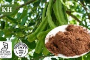 Carod Tree Fruit Pods Extract / Ceratonia Siliqua L. Extract - KINGHERBS LIMITED