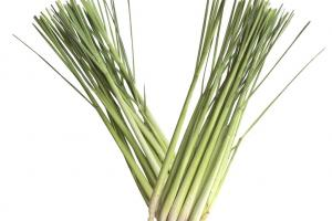 LEMONGRASS INDIAN OIL - Lebermuth
